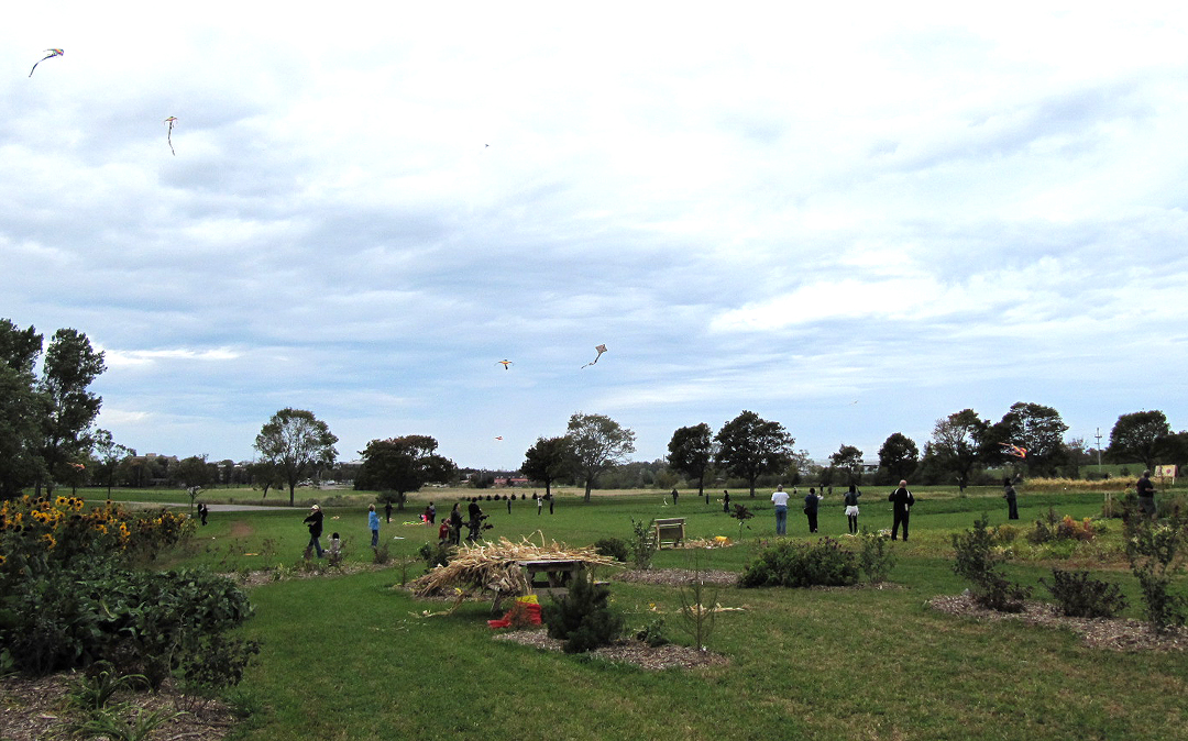KITE FLYING (out in the field) Oct 5 2014