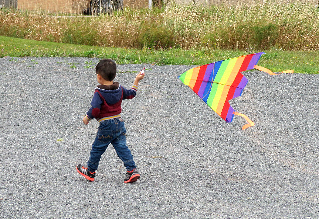 KITE FLYING (young boy) Oct 5 2014